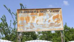 La Saivane Pincesti-4666
