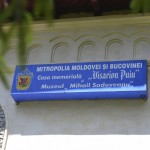 Muzeul Sadoveanu-3246