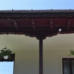 Muzeul Sadoveanu-3359
