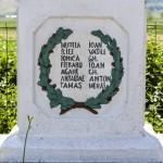 Obelisc Bargaoani-8549