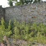 Manastirea Tazlau-6948