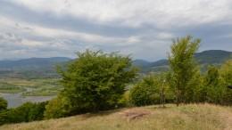 Piatra Neamt Batca-8020