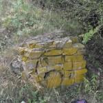 Piatra Neamt Batca-8048