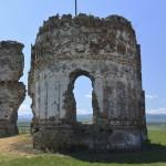Podolein Ruinile Manastirii Buciulesti-7746