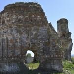 Podolein Ruinile Manastirii Buciulesti-7758