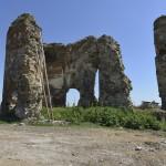 Podolein Ruinile Manastirii Buciulesti-7761