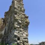 Podolein Ruinile Manastirii Buciulesti-7767