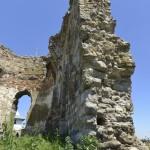 Podolein Ruinile Manastirii Buciulesti-7768