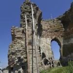 Podolein Ruinile Manastirii Buciulesti-7771