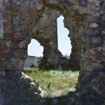 Podolein Ruinile Manastirii Buciulesti-7773