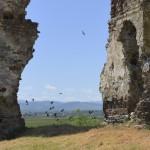 Podolein Ruinile Manastirii Buciulesti-7783