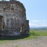 Podolein Ruinile Manastirii Buciulesti-7792