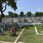 Roman Cimitirul Eroilor-9680