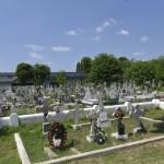 Roman Cimitirul Eroilor-9681