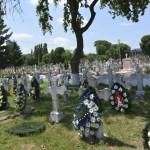 Roman Cimitirul Eroilor-9685
