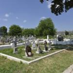 Roman Cimitirul Eroilor-9686