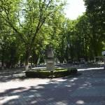 Roman Statuia II Brad-2364