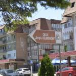 Roman casa Vornicului Done azi Casa Sergiu Celibidache-2893