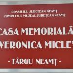 Tg Neamt Casa Veronica Micle-6879