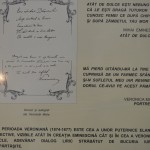 Tg Neamt Casa Veronica Micle-6912