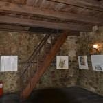 Tg Neamt Cetatea Neamtului-6349