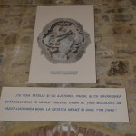 Tg Neamt Cetatea Neamtului-6364