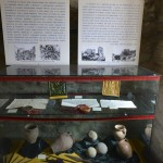 Tg Neamt Cetatea Neamtului-6396