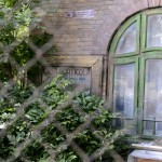 casa Brudariu-6675