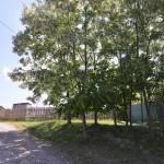 sat Manoaia com Costisa Situl de la Manoia-7630