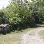 sat Manoaia com Costisa Situl de la Manoia-7635
