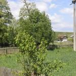 sat Manoaia com Costisa Situl de la Manoia-7641