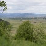 sat Piatra Soimului com Piatra Soimului Dealul Calu-7337