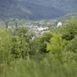 sat Piatra Soimului com Piatra Soimului Dealul Calu-7339