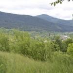 sat Piatra Soimului com Piatra Soimului Dealul Calu-7340