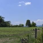 sat costisa Dealul Cetatuia-7696
