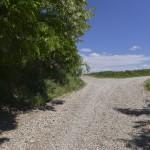 sat costisa Dealul Cetatuia-7707