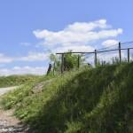 sat costisa Dealul Cetatuia-7708