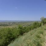 sat costisa Dealul Cetatuia-7713