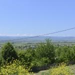 sat costisa Dealul Cetatuia-7739